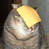 a slice of cheese.