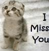 mew miss u