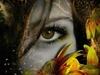eye Spy-> beauty in You