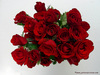 special roses for you!